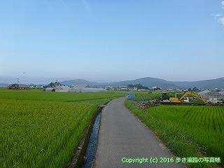 36-019高知県土佐市