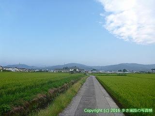 36-021高知県土佐市