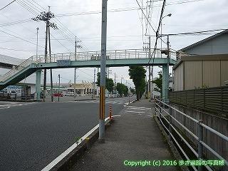 36-038高知県土佐市