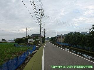 36-044高知県土佐市
