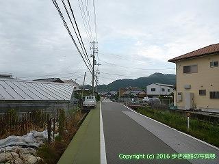 36-046高知県土佐市