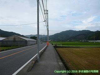 36-049高知県土佐市
