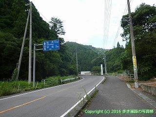 36-066高知県土佐市