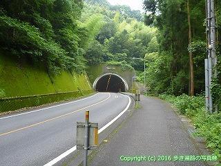 36-072高知県土佐市塚地坂トンネル