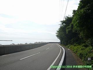 36-110高知県土佐市