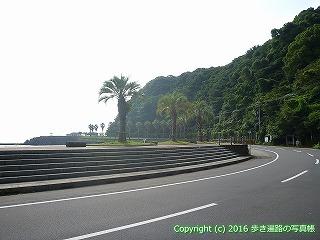 36-112高知県土佐市