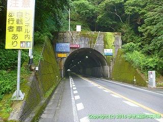 37-186高知県須崎市角谷トンネル