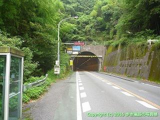 37-219高知県須崎市焼坂トンネル