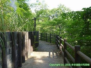 37-289高知県高岡郡中土佐町