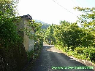 38-040高知県幡多郡黒潮町