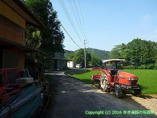 38-042高知県幡多郡黒潮町