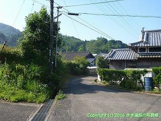 38-043高知県幡多郡黒潮町