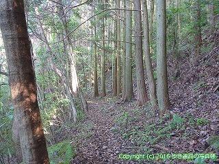 38-055高知県幡多郡黒潮町