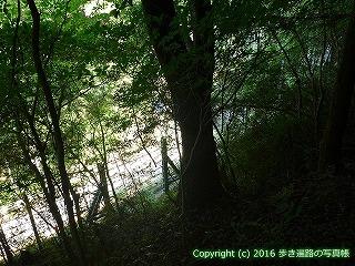 38-056高知県幡多郡黒潮町