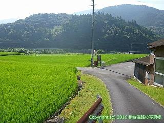 38-074高知県幡多郡黒潮町