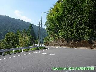 38-077高知県幡多郡黒潮町