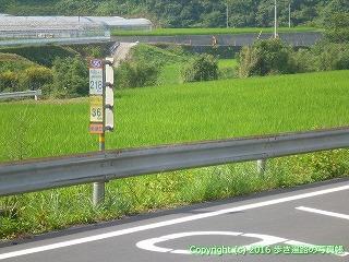 38-084高知県幡多郡黒潮町