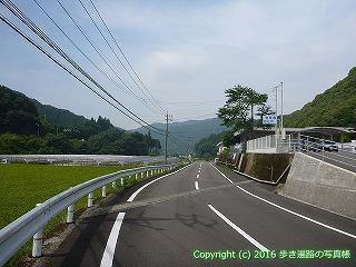 38-110高知県幡多郡黒潮町