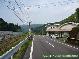 38-111高知県幡多郡黒潮町