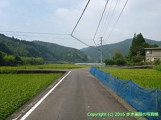 38-116高知県幡多郡黒潮町