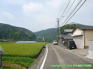 38-117高知県幡多郡黒潮町