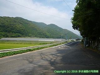 38-119高知県幡多郡黒潮町