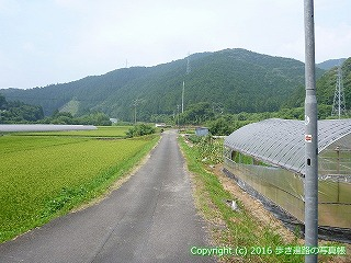 38-122高知県幡多郡黒潮町