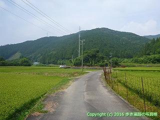 38-123高知県幡多郡黒潮町