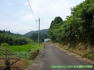 38-126高知県幡多郡黒潮町