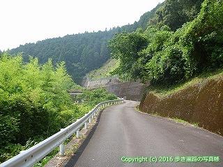 38-128高知県幡多郡黒潮町