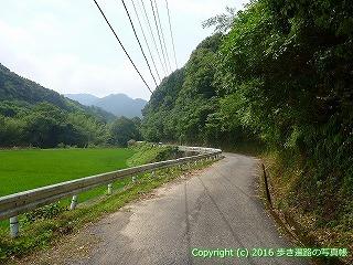 38-131高知県幡多郡黒潮町