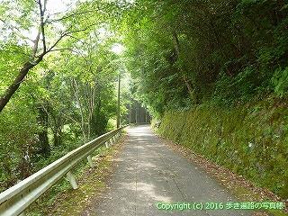 38-141高知県幡多郡黒潮町