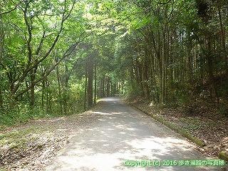 38-142高知県幡多郡黒潮町