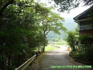 38-143高知県幡多郡黒潮町