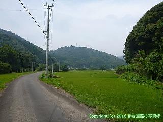 38-153高知県幡多郡黒潮町