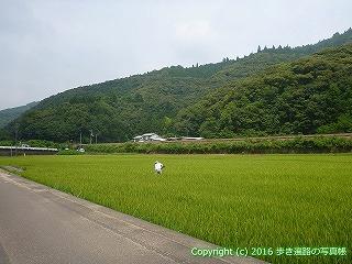 38-156高知県幡多郡黒潮町