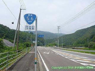38-162高知県幡多郡黒潮町