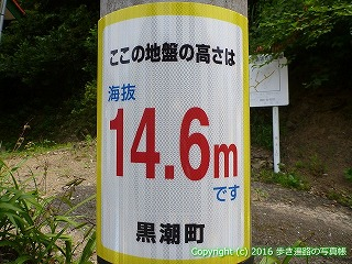 38-176高知県幡多郡黒潮町