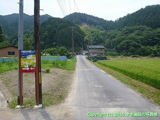 38-177高知県幡多郡黒潮町