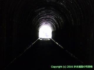 38-189高知県幡多郡黒潮町