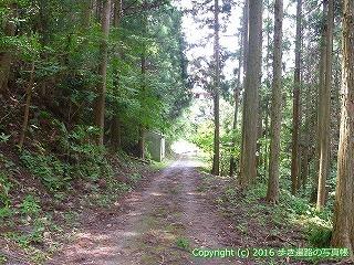 38-192高知県幡多郡黒潮町