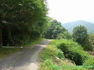 38-196高知県幡多郡黒潮町