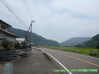 38-203高知県幡多郡黒潮町