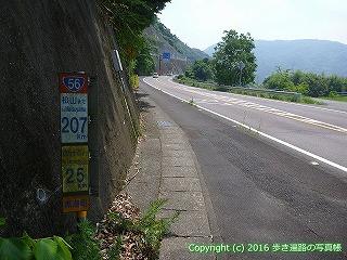 38-211高知県幡多郡黒潮町