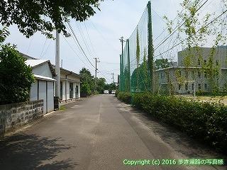 38-221高知県幡多郡黒潮町