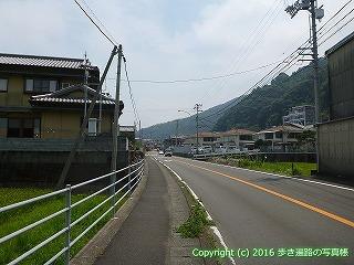 38-229高知県幡多郡黒潮町