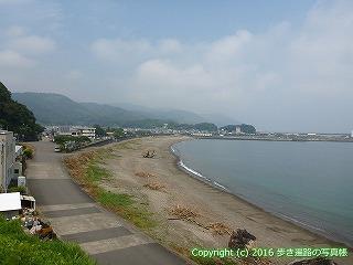 38-239高知県幡多郡黒潮町