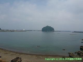 38-241高知県幡多郡黒潮町