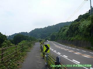 38-254高知県幡多郡黒潮町