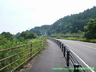 38-255高知県幡多郡黒潮町